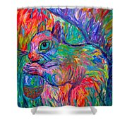Eye Of The Squirrel Shower Curtain