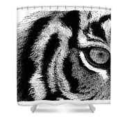 Eye Of The Tiger Shower Curtain