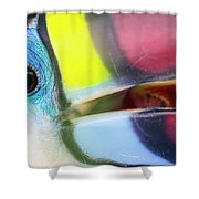 Eye Of The Toucan  Shower Curtain