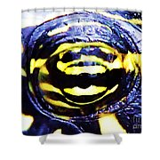 Eye Of The Turtle Shower Curtain