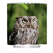 Eye On The Fly Shower Curtain