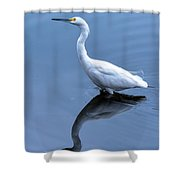 Eye On The Sky Shower Curtain