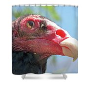 Eyeing The World Shower Curtain