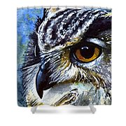 Eyes Of Owls No.25 Shower Curtain
