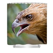 Eyes Of The Hunter Shower Curtain