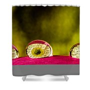 Eyes Of The Petal Shower Curtain