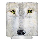 Eyes Of The Wolf Shower Curtain