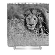 Eyes Of Uncertainty  Shower Curtain