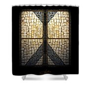 Faberge Sidewalk Shower Curtain