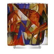 Fabulous Beast II 1913 Shower Curtain