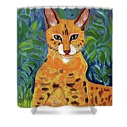 fabulous cat portrait in the style of Van Gogh's Shower Curtain
