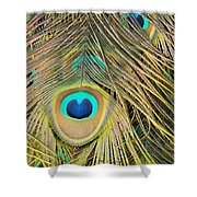 Fabulous Feathers Shower Curtain