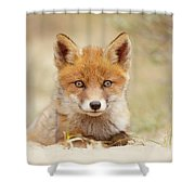 Face Of Innocence - Red Fox Kit Shower Curtain