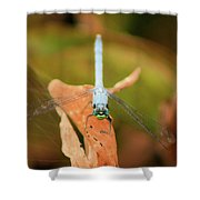 Face Of The Dragon Shower Curtain