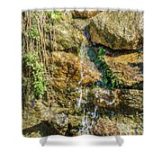 Face Of The Mountain Stream Shower Curtain