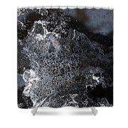 Faces Of Frost Shower Curtain
