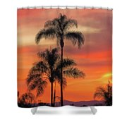 Facing East 2 Shower Curtain