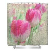 Faded Floral 8 Shower Curtain
