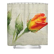Faded Floral 9 Shower Curtain