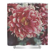 Faded Florals Shower Curtain