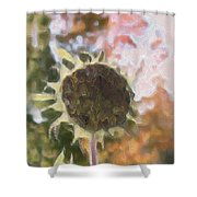 Faded Flower Shower Curtain