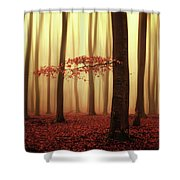 Fading Memories... Shower Curtain