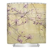Fading Shower Curtain