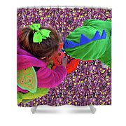 Fairies And Dragons Shower Curtain