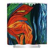 Fairies Of Fire And Ice Shower Curtain