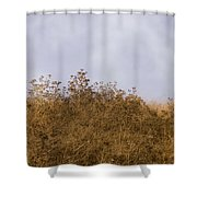 Fairmont  Ridge Shower Curtain