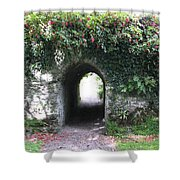 Fairy Bridge Shower Curtain