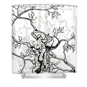 Fairy Cat Climber Shower Curtain