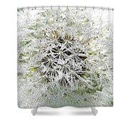 Fairy Crystals Shower Curtain