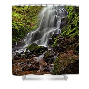 Fairy Falls In Columbia Gorge Shower Curtain