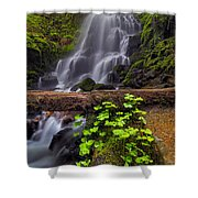 Fairy Falls In Spring Shower Curtain