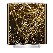 Fairy Lanterns Shower Curtain