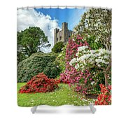 Fairy Tale Castle Shower Curtain