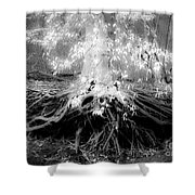 Fairy Tree Shower Curtain