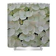 Fairy White Flowers Shower Curtain
