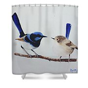 Fairy Wrens - I Love You Too  Shower Curtain