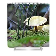 Fairy's Umbrella Shower Curtain