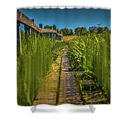 Fairy's View #h5 Shower Curtain by Leif Sohlman