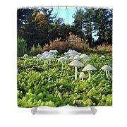 Fairytail Mushrooms Shower Curtain