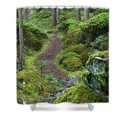 Fairytale Trail Shower Curtain