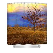 Fairytale Tree Shower Curtain by Barbara Schultheis