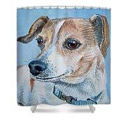 Beloved Dog Commission By Irina Sztukowski  Shower Curtain