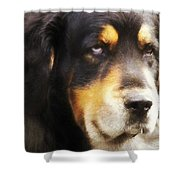 Faithful Shower Curtain