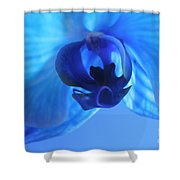 Faithfully Blue Shower Curtain