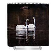 Faithfulness Shower Curtain