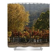 Fall Vines IIi Shower Curtain
